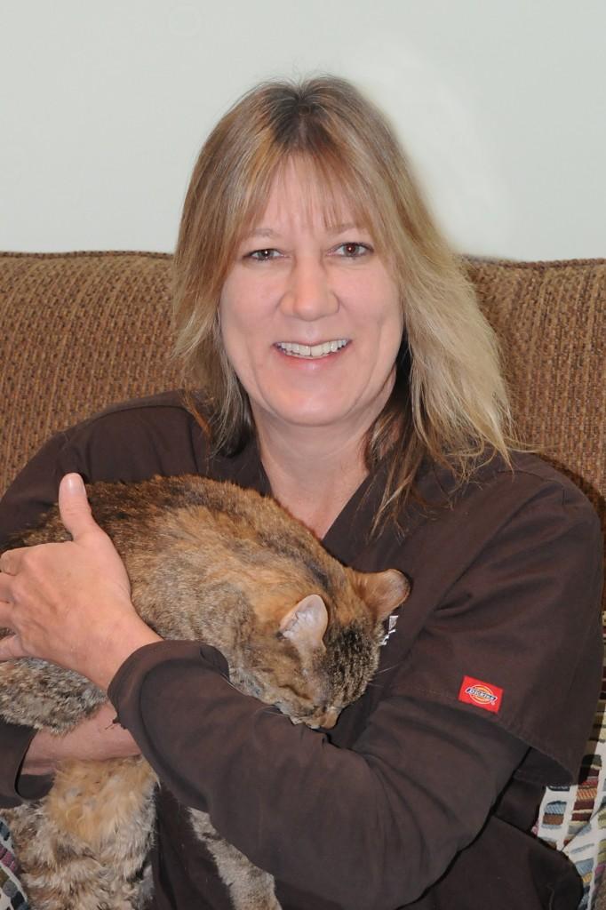 Cat Clinic 2013Lisa2