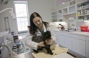 Cat_clinic_Odriscoll_t180